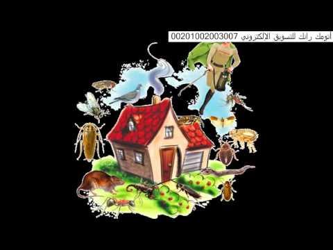 شركة رش مبيدات بالرياض – افضل شركات رش مبيدات بالرياض 0551128002