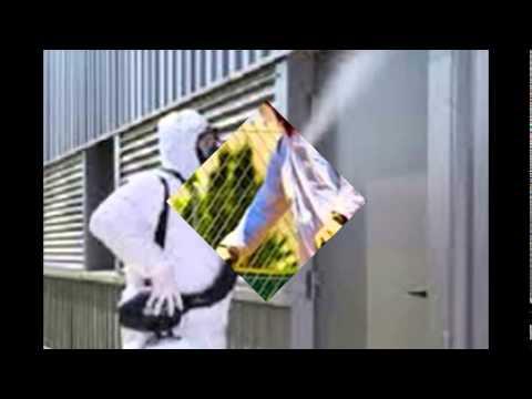 شركة رش مبيدات بالرياض – شركة رش مبيدات شرق الرياض