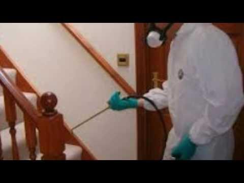 شركة رش مبيدات بالرياض – افضل شركة ابادة حشرات بالرياض 0550606879 رش مبيدات