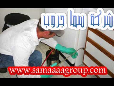 شركة رش مبيدات بالرياض – شركة رش مبيدات بالرياض-سما جروب