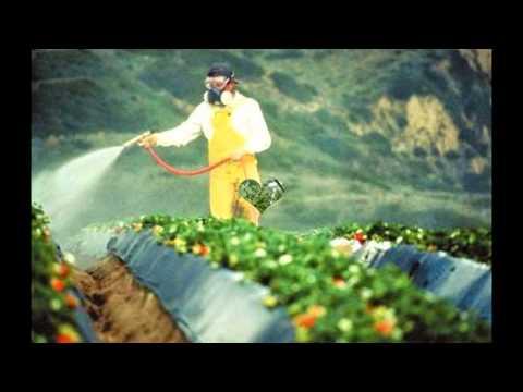 شركة رش مبيدات بالرياض – شركه رش مبيدات بالرياض خبراء المملكه0566143611 – 0566822461