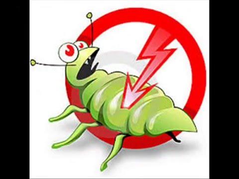 شركة رش مبيدات بالرياض – افضل شركة رش مبيدات بالرياض ومكافحة حشرات اليمامة 0553470082| شركة لرش المبيدات بالرياض