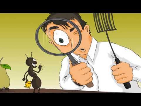 شركة رش مبيدات بالرياض – أفضل شركة مكافحة حشرات بالرياض -0533393243-رش مبيدات،شركة رش الحشرات بالرياض