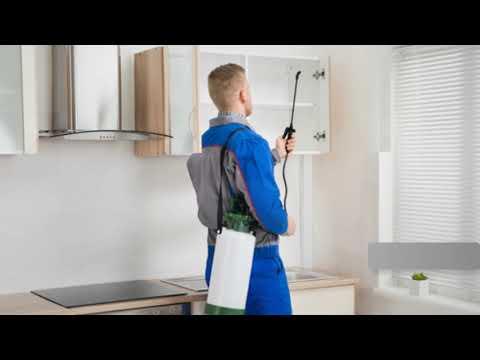 شركة رش مبيدات بالرياض – افضل شركة رش مبيد حشرى بالرياض