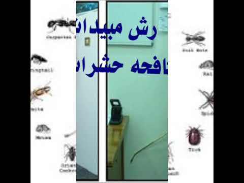شركة رش مبيدات بالرياض – شركة رش مبيدات الصفرات 0550721168