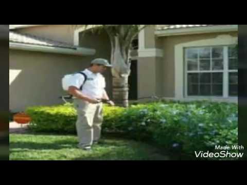 شركة رش مبيدات بالرياض – أحسن شركة رش مبيدات الحشرات بالرياض 0506099245 أرخص شركات رش المبيدات