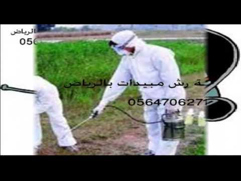 شركة رش مبيدات بالرياض – شركة رش مبيدات بالرياض –