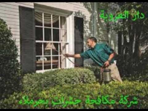 شركة رش مبيدات بالرياض – شركة الصفرات رش مبيدات بالرياض 0550942742 مؤسسة زهرة مملكة