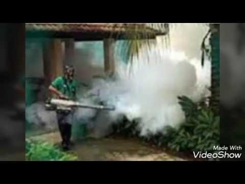 شركة رش مبيدات بالرياض – أرخص شركة مكافحة حشرات0506099245 أرخص اسعار رش مبيدات بالرياض