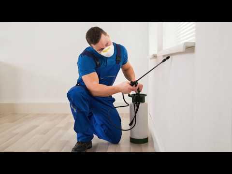 شركة رش مبيدات بالرياض – شركة رش مبيدات بالرياض – 0566398004