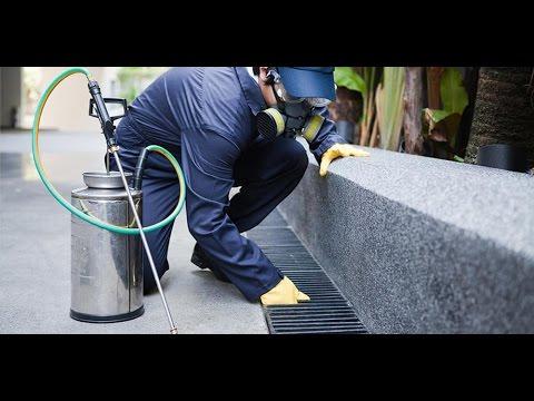 شركة رش مبيدات بالرياض – شركة رش مبيدات بالرياض 0530242929