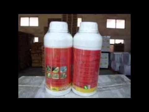 شركة رش مبيدات بالرياض – شركة رش مبيدات بالرياض 0555260167 شركة الافضل