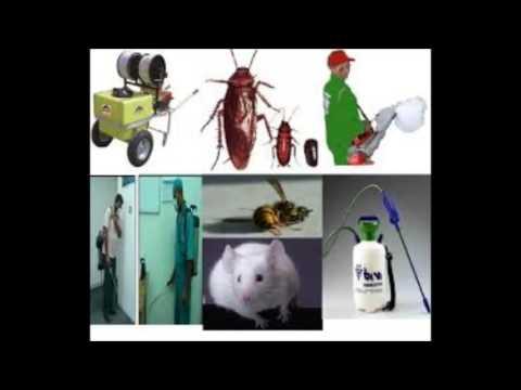 شركة رش مبيدات بالرياض – شركة رش مبيدات بالرياض ا0501358939 شركة زهرة اللوتس